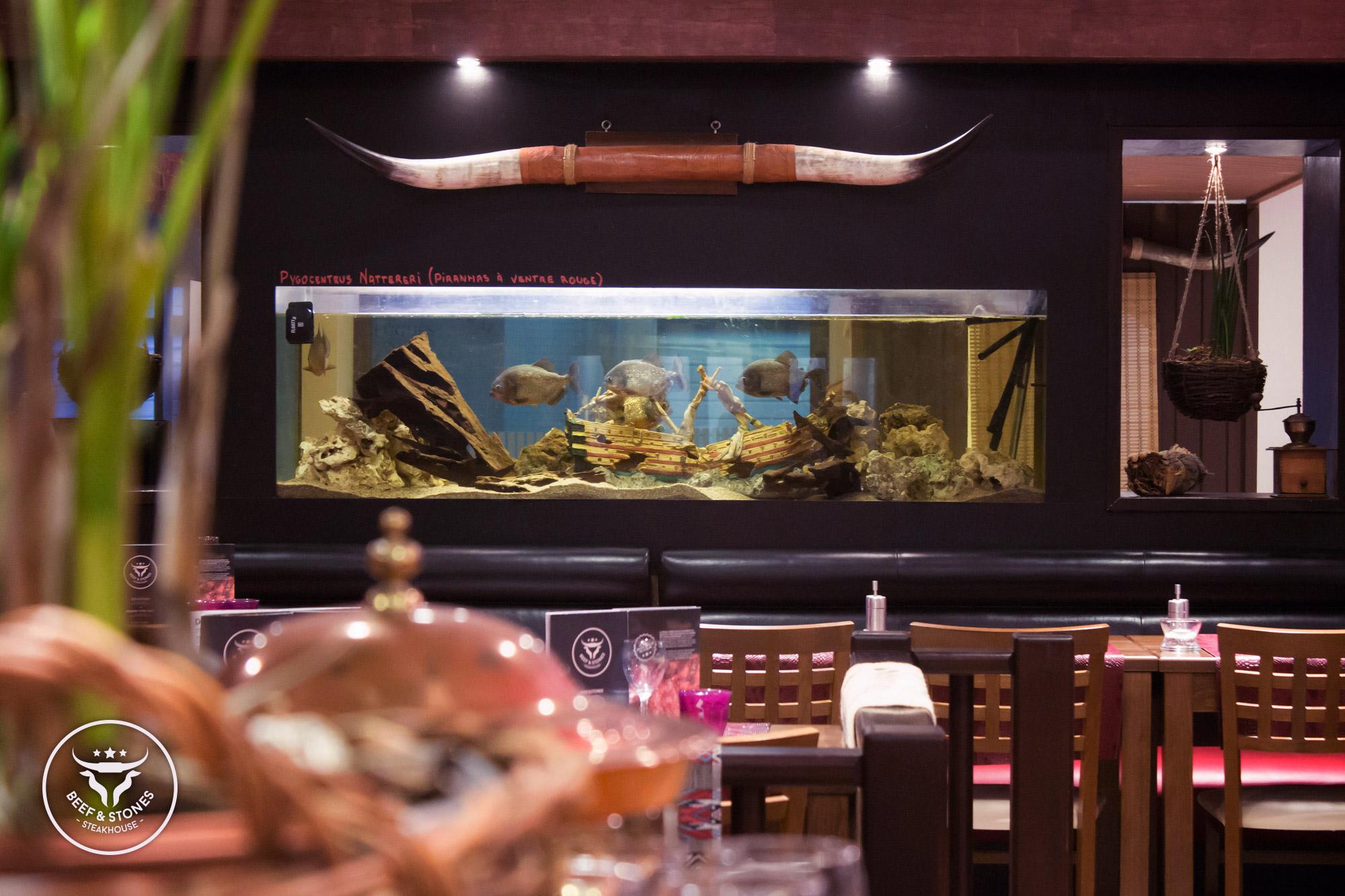 Restaurant beef stones steakhouse viande de qualité sur